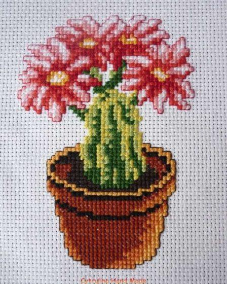 cytrulinahandmade.pl haft krzyżykowy kaktus cz.1 0372