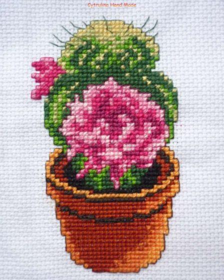 cytrulinahandmade.pl haft krzyżykowy kaktus cz. 2 0388