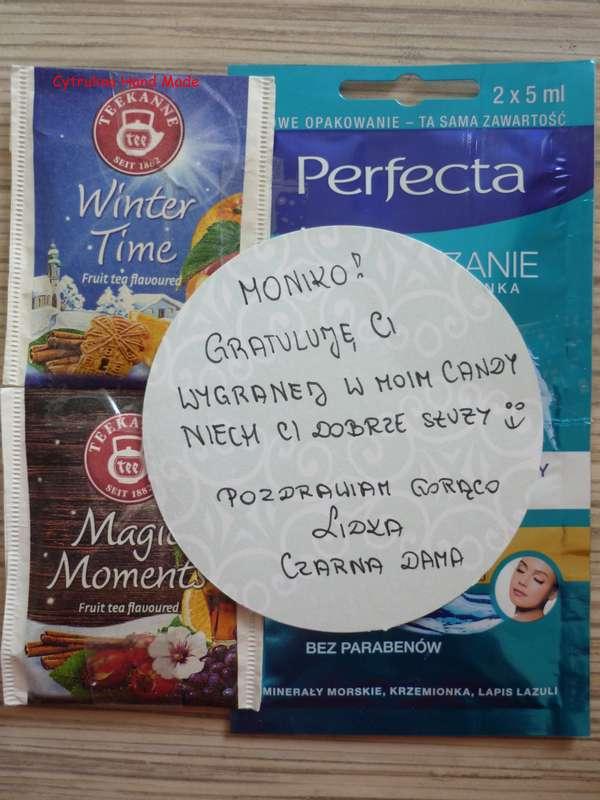 cytrulinahandmade.pl haft krzyzykowy 0539 - Kocia zakładka icudna torba zMisiowego Zakątka