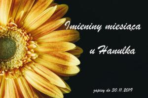 sunflower 2179011 1280 300x200 - Imieniny Miesiąca - Listopad: kartka zKubusiem
