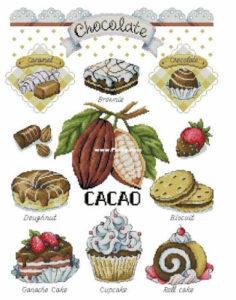 75262227 2440294329569480 4853300906902421504 n 236x300 - SAL Cacao cz.10